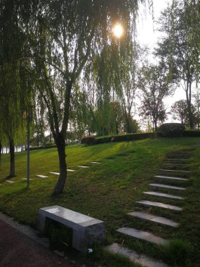 beautiful park in the city