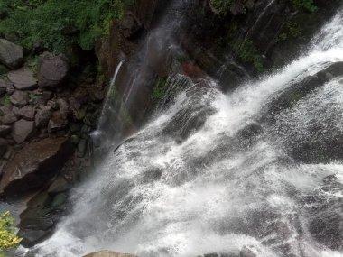 """Картина, постер, плакат, фотообои """"водопад в лесу"""", артикул 293663924"""