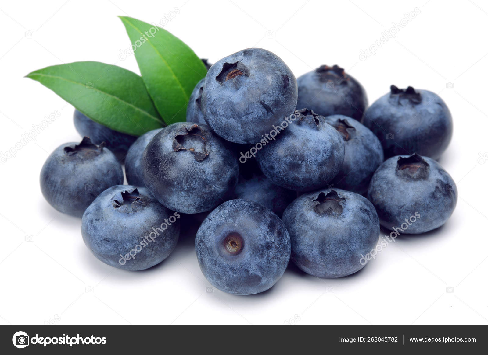 Fresh blueberries with leaves isolated on white — Stock