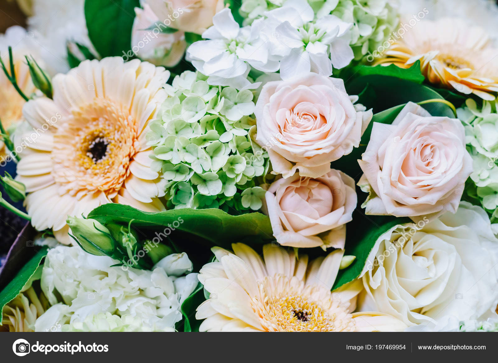 Pink Roses Gerbera Daisy Flowers Wedding Bouquet Stock Photo