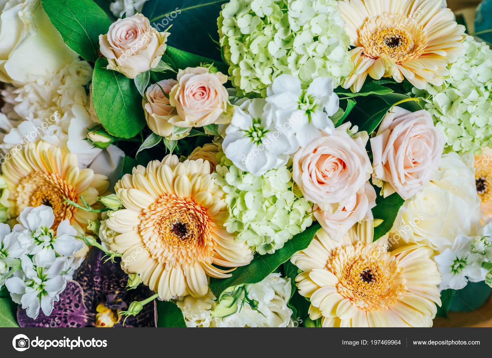 Pink Roses Gerbera Daisy Flowers Wedding Bouquet Stock Photo