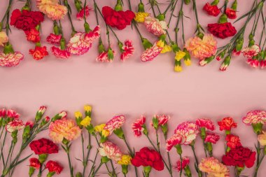 Pink background with carnations flowers and copy space. Top view. Mothers Day background.