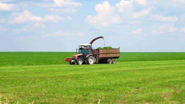 Sklízecí komizátor Rozsekne zelenou trávu. Úprava krmiv pro skot