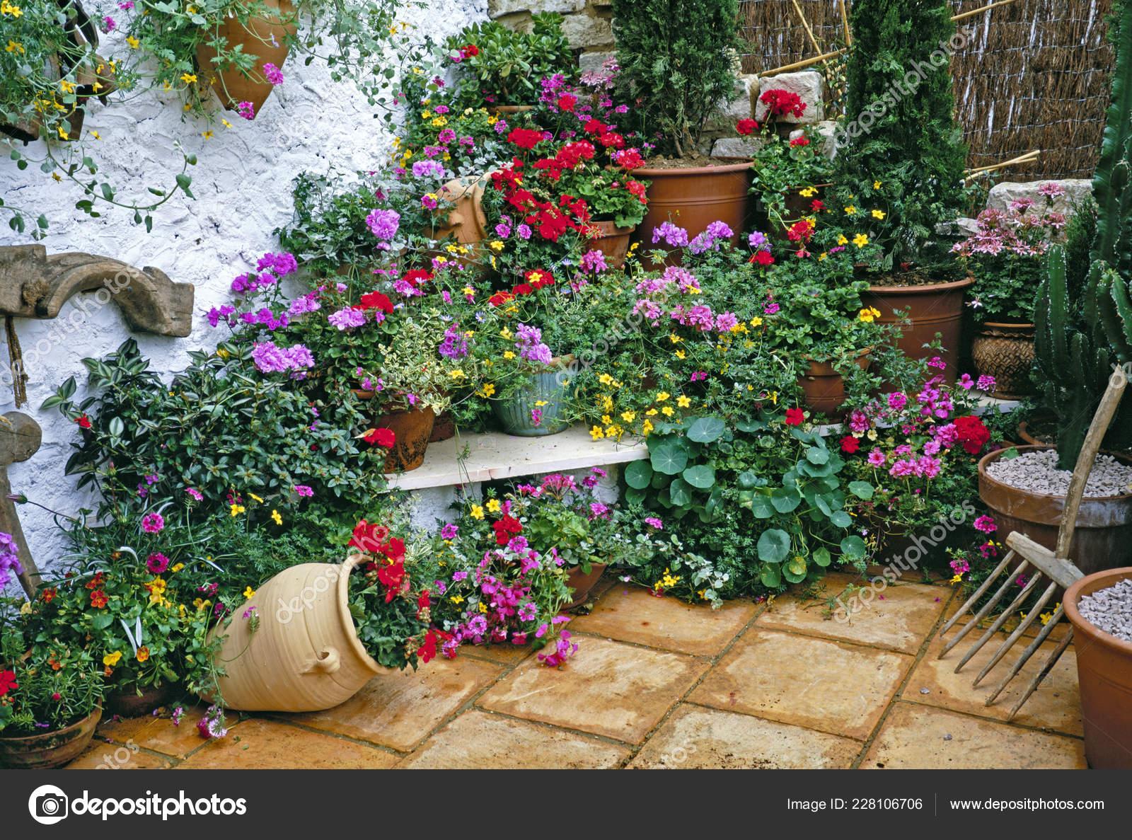 Pictures Mediterranean Gardens Mediterranean Garden Colourful