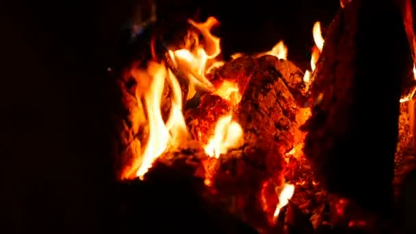 Fire In The Fireplace Burning Firewood Slow Motion Close Up