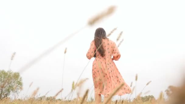 A lovely brunette girl walks through the grass. View from the back. Slow-motion