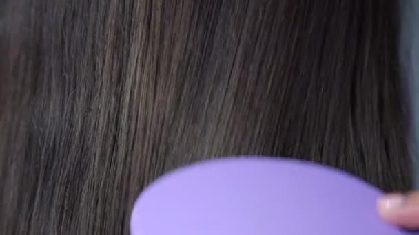 barna Fésűs szőr a háton és a fej lila hajkefe