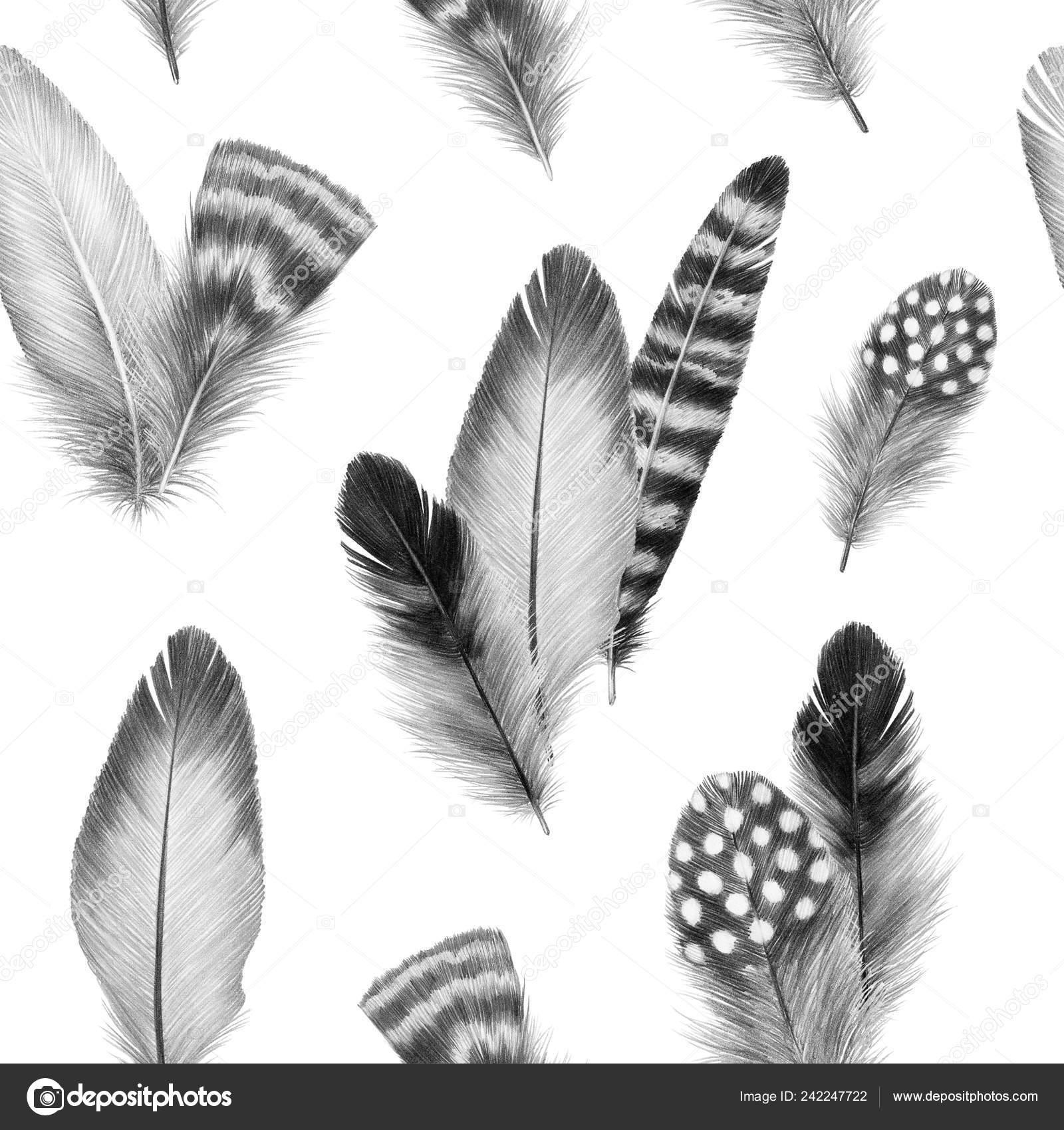 szép tollvastag fasz képek