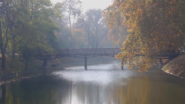 Two people are walking on a wooden bridge across river in a park at beautiful autumn day.