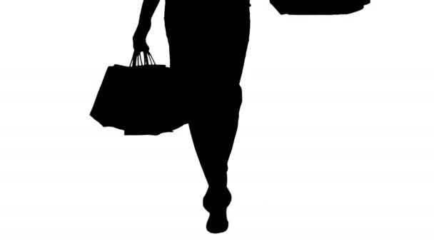 Silueta umožňuje nakupovat krásná žena nohy s nákupníma taškama.