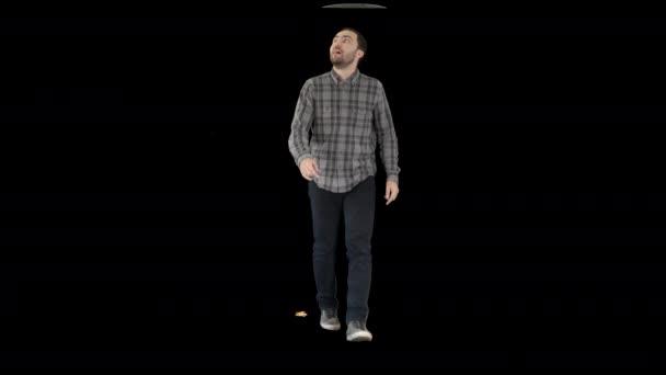 Mladý muž kráčející vzhůru fascinován, Alpha Channel