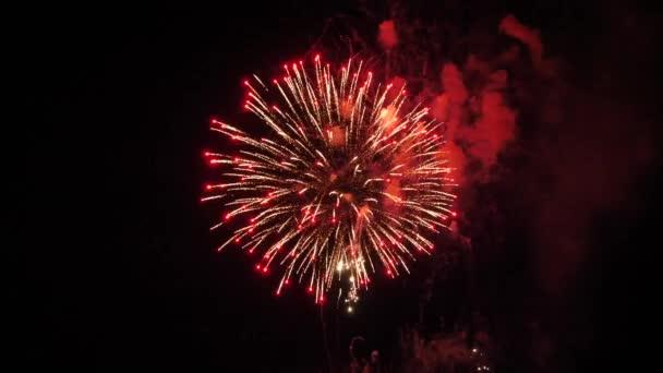 A tűzijáték az éjszakai égbolton