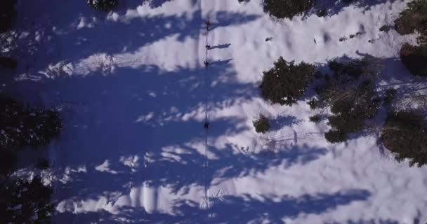 Muži jdou skitour v lese hlubokém sněhu