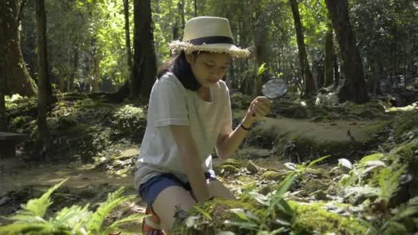Ázsiai aranyos lány visel szalma kalap ül, és használja nagyító, hogy a részleteket a zöld növény az oktatás alatt napfény a trópusi erdőben. Tudás az osztálytermen kívül. Természet és természetvédelem.