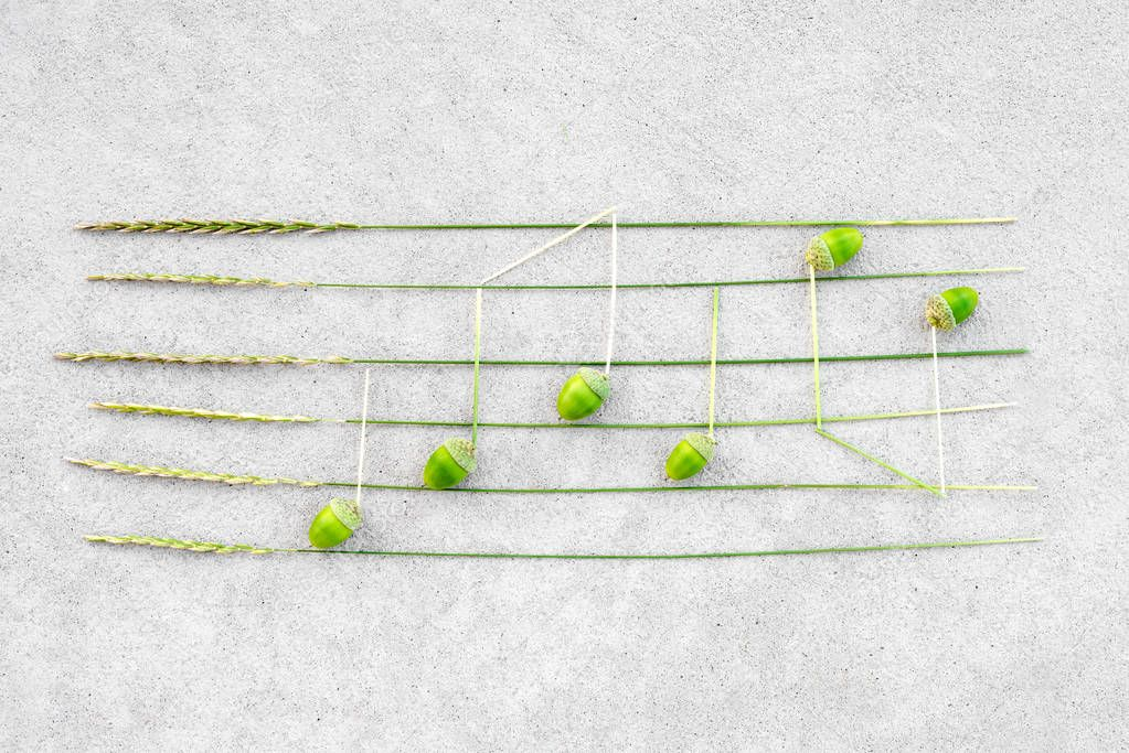 Sounds of nature. Music notes made of green acorns and wild grass, on concrete background.