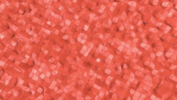 animovaný vzorovaných korálové barvy. 3D vykreslování