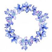 Fotografia Fiori di orchidea viola. Illustrazione dellacquerello della priorità bassa. Ghirlanda di telaio confine ornamento