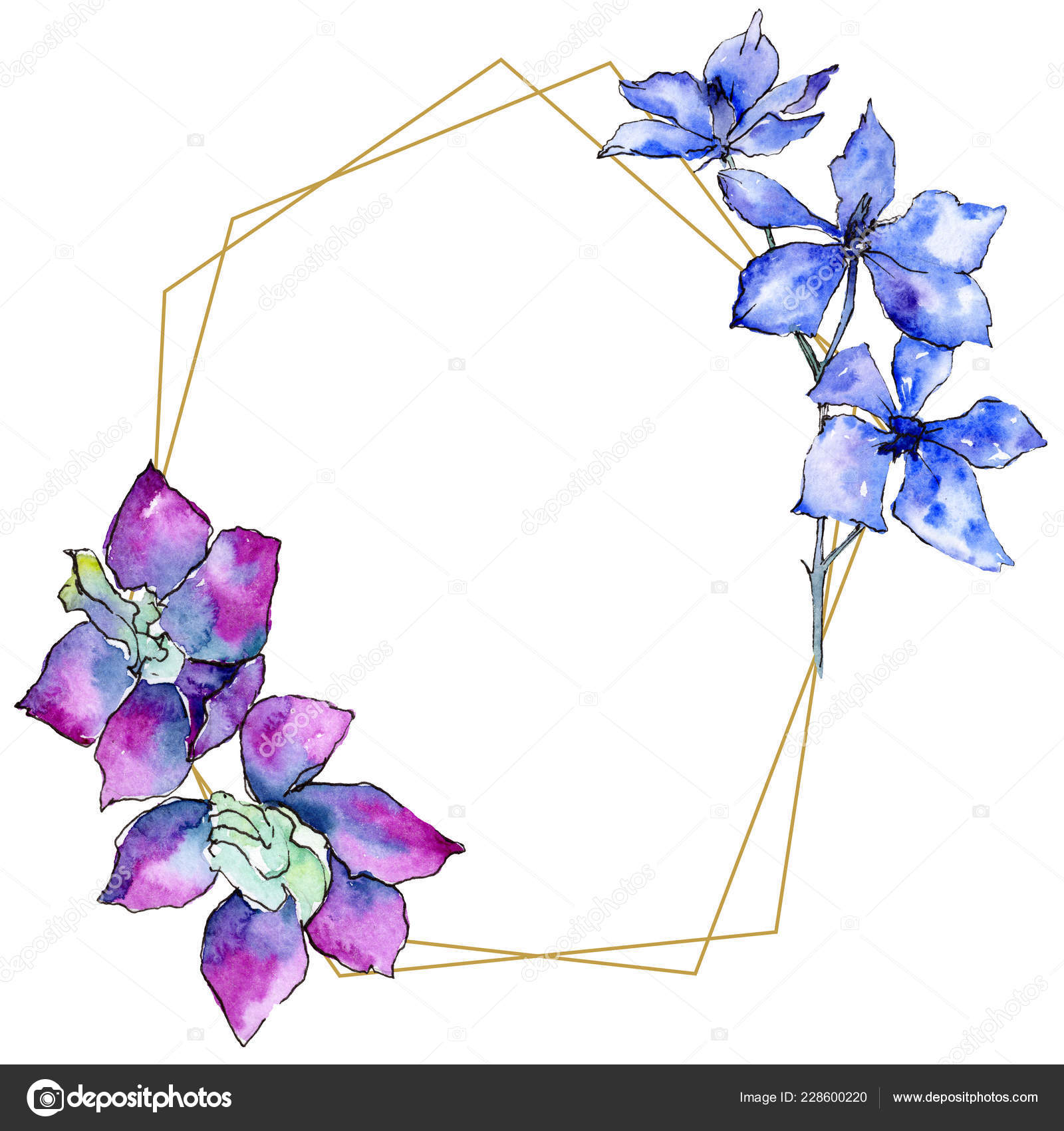 Purple Orchid Flowers Watercolor Background Illustration Golden