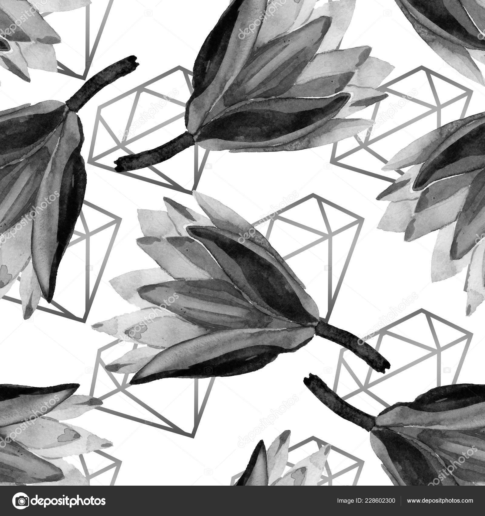100+ Wallpaper Black Lotus HD Paling Baru
