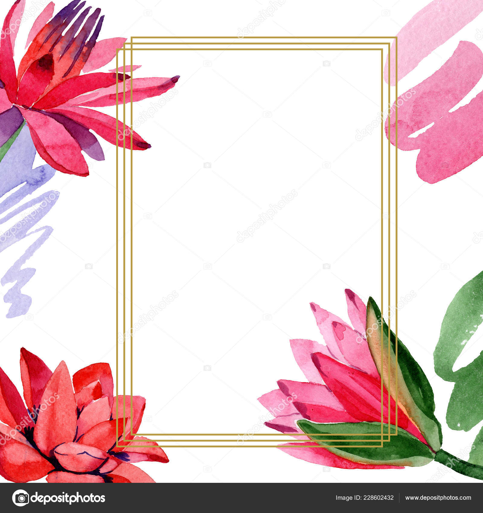 Red Lotus Flowers Watercolor Background Illustration Frame Border