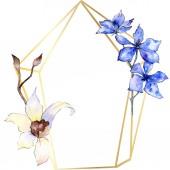 Fialové a bílé květy orchidejí. Ilustrace akvarel zázemí. Zlaté polygonální rám s květinami. Geometrické mnohostěn krystalový tvar