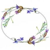 Květy fialové levandule. Divoký jarní květy se zelenými listy. Ilustrace akvarel zázemí. Kulatý rám hranice.