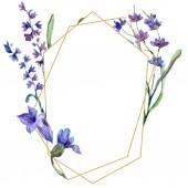 Květy fialové levandule. Ilustrace akvarel zázemí. Rámeček ornament hranice. Ručně broušený český křišťál kamenné mnohostěn mozaika tvar amethyst drahokam
