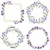 Fotografie Lila Lavendel Blumen. Wilde Frühling lässt. Aquarell Hintergründe festgelegt. Quadrat, rund, Kranz und goldenen Kristall Rahmen festlegen