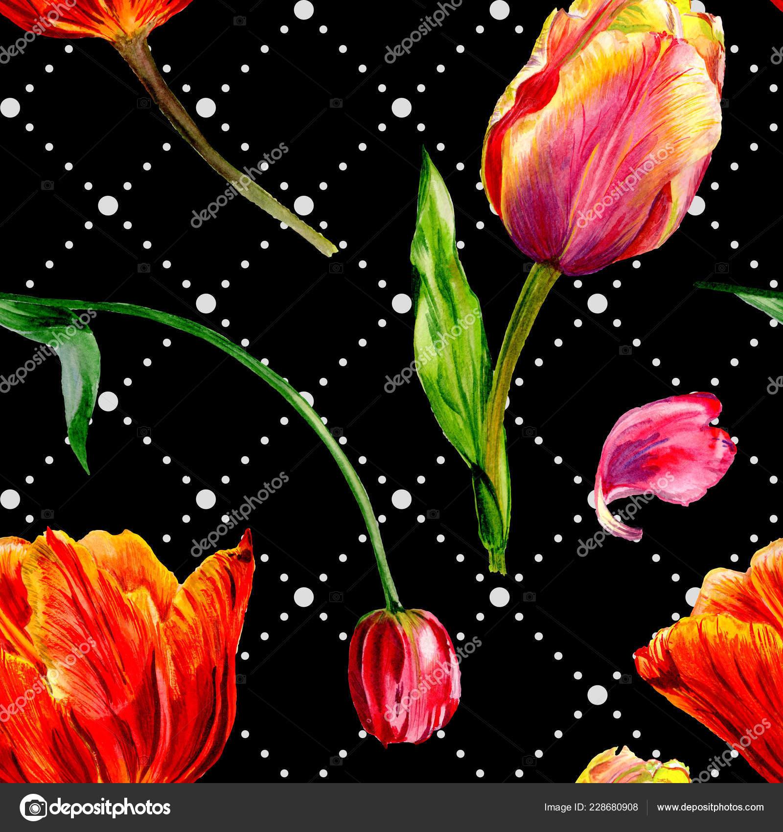 Tolle Rote Tulpe Blumen Mit Grünen Blättern Handgezeichnete