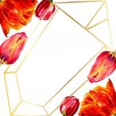 Fényképek Csodálatos piros tulipán virág, zöld levelekkel. Kézzel rajzolt botanikai virágok. Akvarell háttér illusztráció. Test határ dísz kristály. Geometriai kvarc sokszög kristály kő