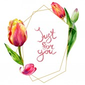 Fotografie Amazing red tulip flowers with green leaves. Just for you handwriting monogram calligraphy. Watercolor background illustration. Frame crystal. Geometric shape.