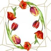Fényképek Csodálatos piros tulipán virág, zöld levelekkel. Kézzel rajzolt botanikai virágok. Akvarell háttér illusztráció. Keret kerek határ dísz. Geometriai kvarc sokszög kristály kő