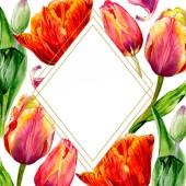 Csodálatos piros tulipán virág, zöld levelekkel. Kézzel rajzolt botanikai virágok. Akvarell háttér illusztráció. Test határ dísz kristály. Geometriai kvarc sokszög kristály kő.