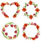 Fotografie Tolle rote Tulpe Blumen mit grünen Blättern. Handgezeichnete botanische Blumen. Aquarell Hintergründe festgelegt. Ornamentale Kranz, Quadrat, Herz und gold Kristall frames