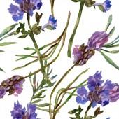 Květy fialové levandule. Vzor bezešvé pozadí. Fabric tapety tisku texturu. Ručně tažené ilustrace akvarel zázemí.