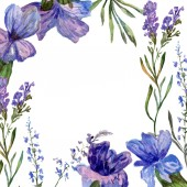 Purple lavender flowers. Wild spring flowers. Watercolor background illustration. Frame border square.