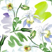 Fotografie White aquilegia flowers. Beautiful spring wildflowers. Seamless background pattern. Fabric wallpaper print texture. Watercolor background illustration.