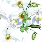Fényképek Aquilegia fehér virágok. Szép tavaszi wildflowers. Varratmentes háttérben minta. Szövet nyomtatási textúrát. Akvarell háttér illusztráció.
