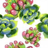Csodálatos succulents. Akvarell háttér illusztráció. Varratmentes háttérben minta. Anyagot a nyomtatási textúrát