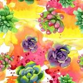 Úžasné sukulenty. Ilustrace akvarel zázemí. Vzor bezešvé pozadí. Fabric tapety tisku textura