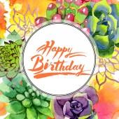 Csodálatos succulents. Boldog születésnapot kézírás monogram kalligráfia. Akvarell háttér illusztráció. Test határ dísz kerek. Az Aquarelle kézzel szukkulens növények.