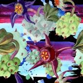 Duvalia virágok. Akvarell háttér illusztráció. Aquarelle kézzel rajzolt szukkulens növények. Varratmentes háttérben minta. Anyagot a nyomtatási textúrát