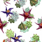 Fotografie Duvalia flowers. Watercolor background illustration. Aquarelle hand drawn succulent plants. Seamless background pattern. Fabric wallpaper print texture.
