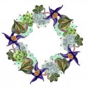 Fotografie Duvalia flowers. Watercolor background illustration. Frame border ornament wreath. Aquarelle hand drawing succulent plants.