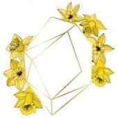 Fotografie Vektor-Narzisse Blumen. Gravierte Tinte yellow Kunst. Frame Border Ornament auf weißem Hintergrund Polyeder Mosaik Form
