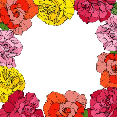 Vector Roses. Floral botanical flowers. Red, pink and yellow engraved ink art. Floral border square illustration. clip art vector
