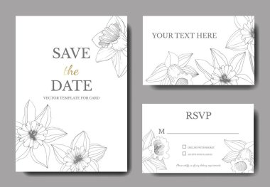 Vector Narcissus flowers. Wedding cards with floral decorative borders. Black and white engraved ink art. Thank you, rsvp, invitation elegant cards illustration graphic set banners. clip art vector