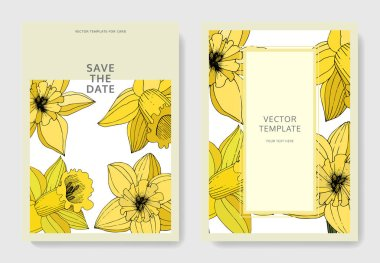 Vector Narcissus flowers. Wedding cards with floral decorative borders. Yellow engraved ink art. Thank you, rsvp, invitation elegant cards illustration graphic set banners. clip art vector