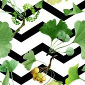 Fotografie Krásné zelené ginkgo biloba s listy izolované na bílém. Ilustrace akvarel zázemí. Vzor bezešvé pozadí. Fabric tapety tisku textura