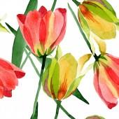Krásné žluté tulipány se zelenými listy izolované na bílém. Ilustrace akvarel zázemí. Vzor bezešvé pozadí. Fabric tapety tisku textura